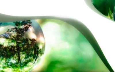 Evaluación de Impacto Ambiental, una Herramienta para el Desarrollo Sostenible